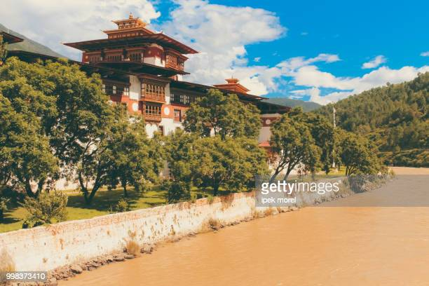 punakha dzong temple - ipek morel stock pictures, royalty-free photos & images