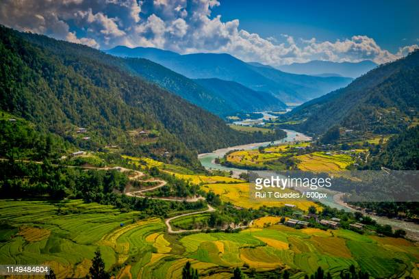 punakha valley, bhutan - bhutan stock pictures, royalty-free photos & images