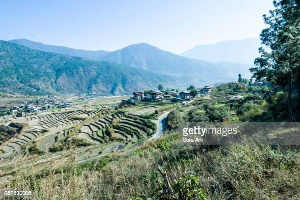 punakha valley, bhutan. - プナカ ストックフォトと画像