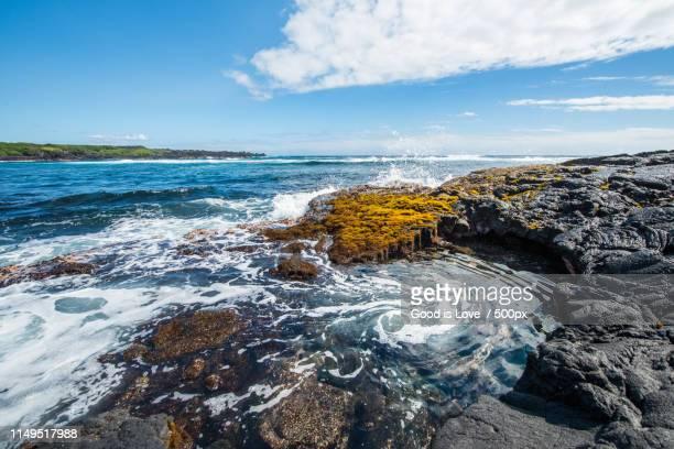 punalu'u beach black sand beach - punalu'u_beach stock pictures, royalty-free photos & images