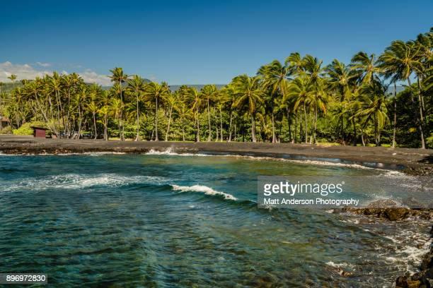punalu'u beach #7 - punalu'u_beach stock pictures, royalty-free photos & images