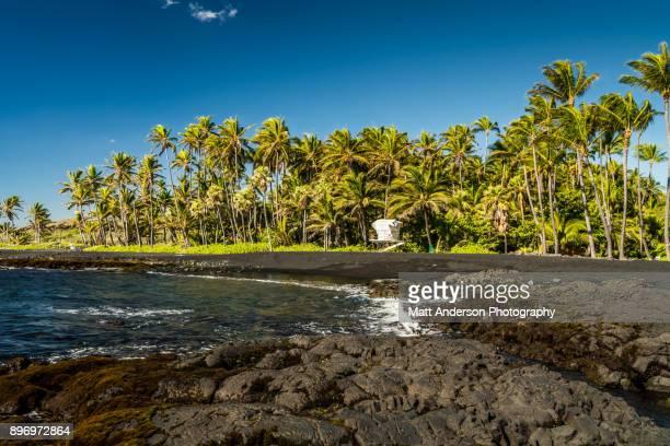 punalu'u beach #3 - punalu'u_beach stock pictures, royalty-free photos & images