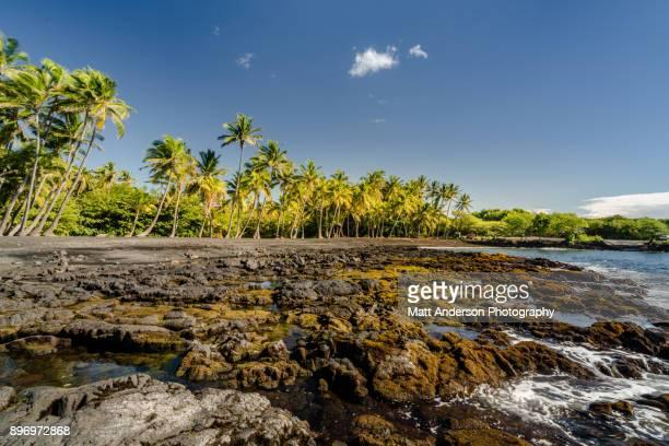 punalu'u beach #2 - hawaii volcanoes national park stock pictures, royalty-free photos & images