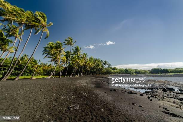 punalu'u beach #1 - punalu'u_beach stock pictures, royalty-free photos & images