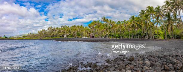 punalu'u black sand beach,pahala,big island,hawaii,usa - punalu'u_beach stock pictures, royalty-free photos & images