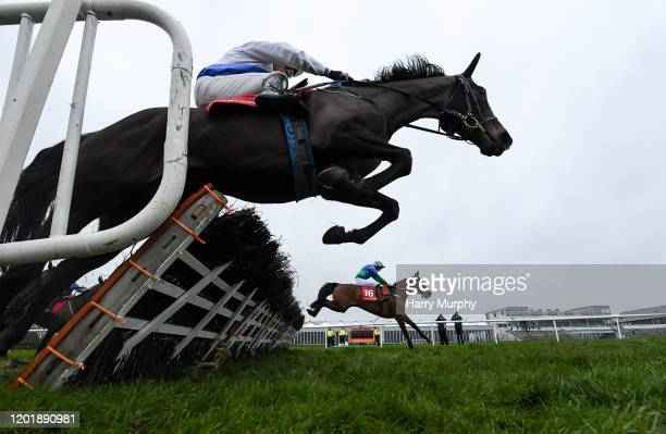 Punchestown Ireland 19 February 2020 Stoughan Cross with Oakley Brown up jump the last ahead of Moll Dote with Barry Foley up on their way the New...