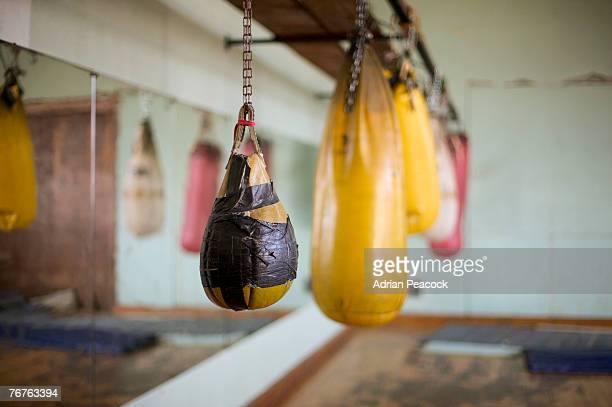 Punching bags in a gym