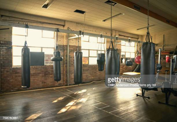 Punching bags in empty gymnasium