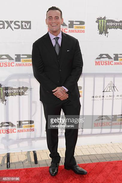 Punk attends the 2014 Gibson Brands AP Music Awards at the Rock and Roll Hall of Fame and Museum on July 21 2014 in Cleveland Ohio