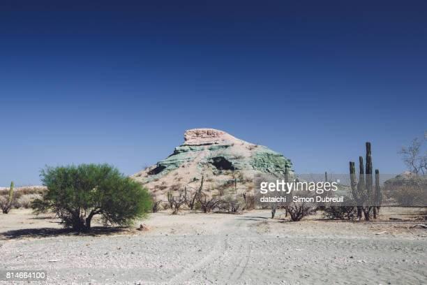 Punta Coyote green rocks