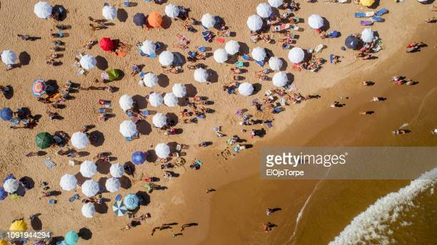 punta del este's beach, aerial view, drone point of view, sand and ocean, uruguay - uruguay stock pictures, royalty-free photos & images