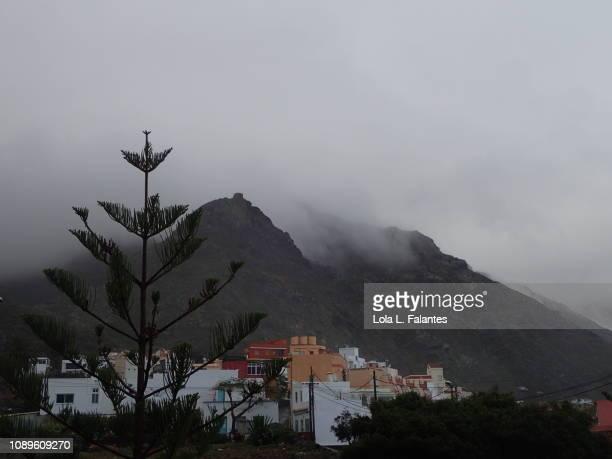 Punta del Hidalgo town