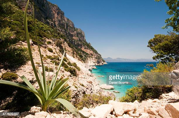 punta goloritzé - sardinia stock pictures, royalty-free photos & images