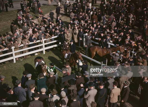 Punters and racegoers crowd round to watch racehorses being unsaddled in the winners' enclosure on the first day of the racing season at Lincoln...
