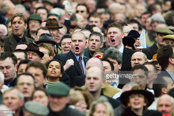 Punters cheer as Hardy Eustace ridden by KAKelly wins the Royal and Sun Alliance Novices Hurdle Race held on March 12 2003 at Cheltenham Racecourse...