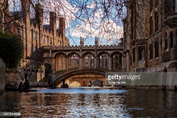 punting on river cam under bridge of sighs, cambridge - cambridge university stock pictures, royalty-free photos & images