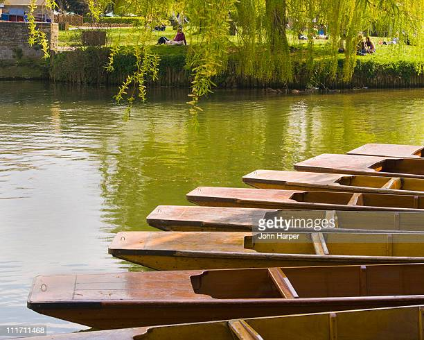 punts, river cam, cambridge - cambridge stock pictures, royalty-free photos & images