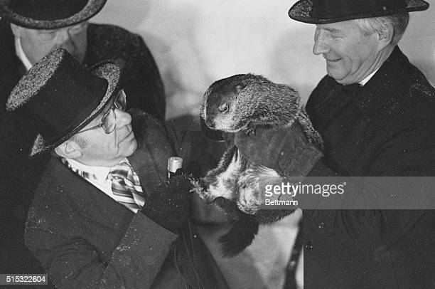 Punxsutawney Pennsylvania Groundhog Punxsutawney Phil made his annual weather prediction and appearance at Cobbler's knob 2/2 He saw his shadow and...