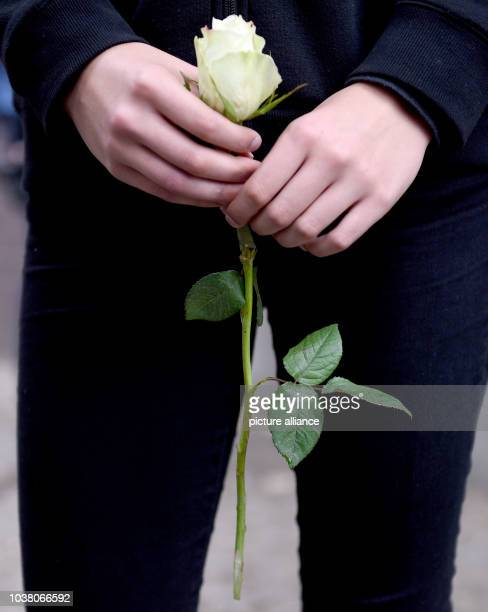 Apupil holds a white rose in her hands on the premises of the Paula Fuerst comprehensive school in BerlinGermany 15 July 2016 Two pupils and a...