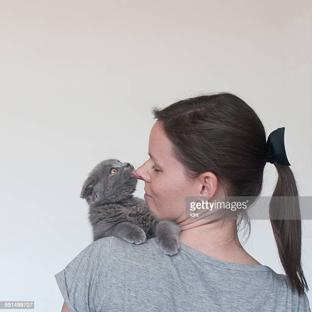 Puppy cat playing with its owner