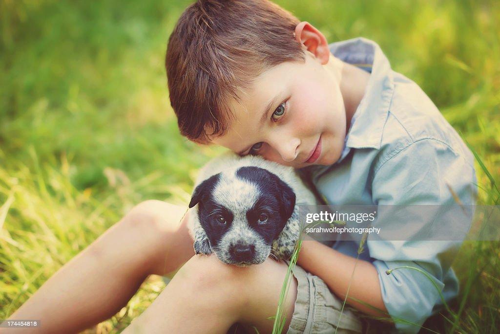 puppy love : Stock Photo