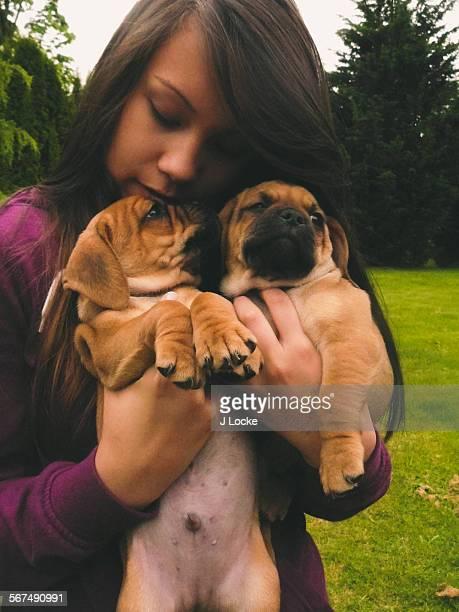 puppy love - パグル犬 ストックフォトと画像