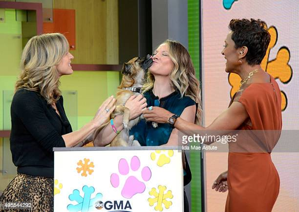 The North Shore Animal League brought puppies who are up for adoption to GOOD MORNING AMERICA 11/3/15 airing on the ABC Television Network