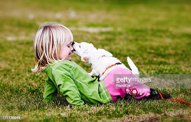 Puppy nibbling child's nose