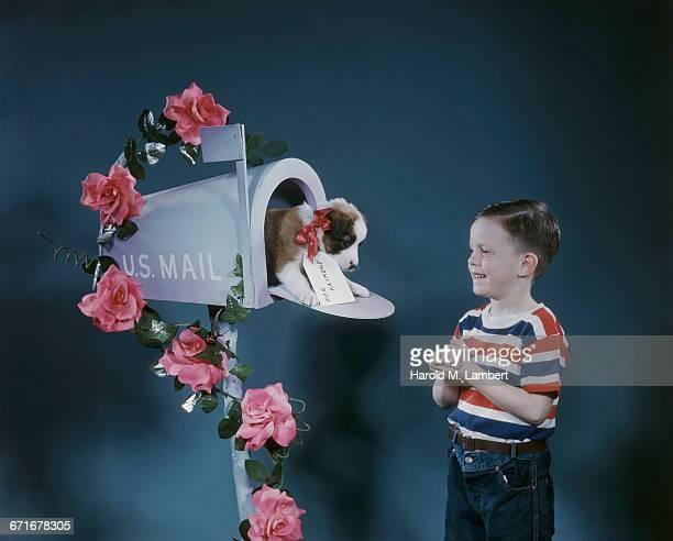 puppy sits inside of a mailbox with boy looking at him  - mamífero con garras fotografías e imágenes de stock