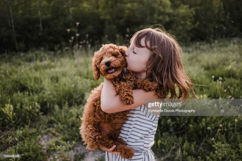 Puppy turning away from girl's kisses : Stock-Foto