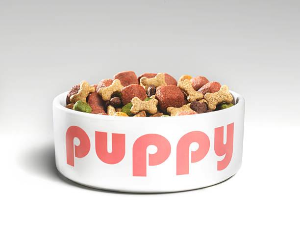 puppys feeding bowl with food picture id136794470?k=20&m=136794470&s=612x612&w=0&h=7LylSjmNahpvIYXetr11l6 sn5kI u4X2gmkJ6CE4KE=