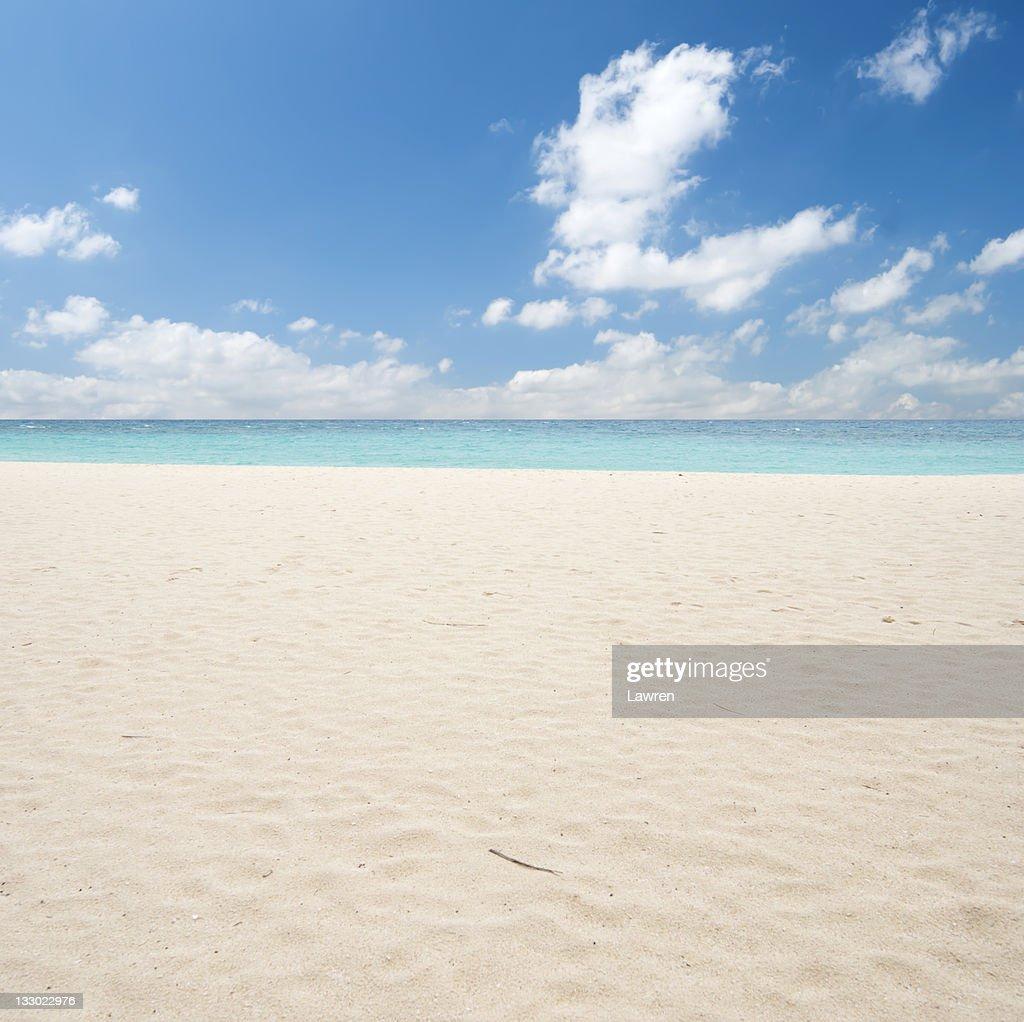 Pure beach : Stock Photo