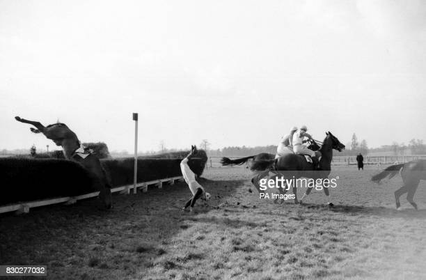 Purley Selling Handicap SteeplechaseNational Hunt jockey Dick Francis on his horse Desert Smiles taking a simultaneous nose dive at the third fence...
