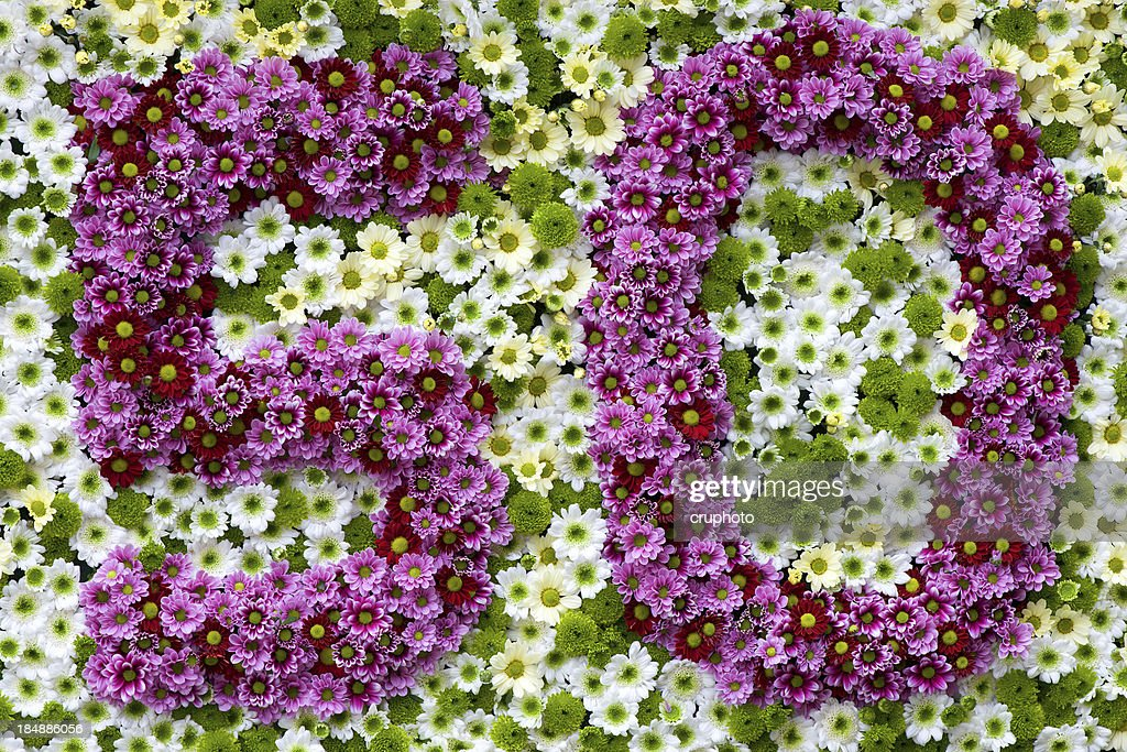 Purple and white flowers in a shape of number 50 stock photo getty purple and white flowers in a shape of number 50 stock photo mightylinksfo