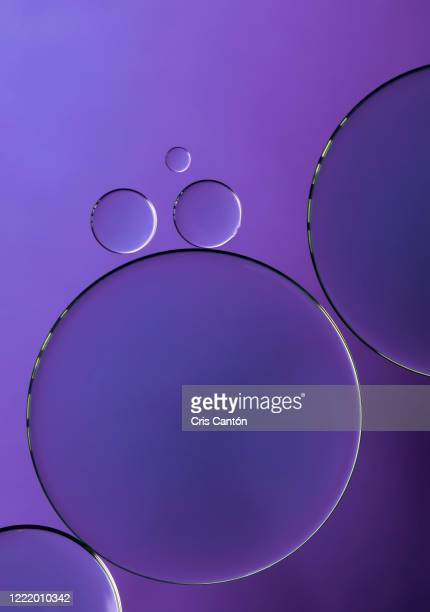 purple bubbles - cris cantón photography stock pictures, royalty-free photos & images