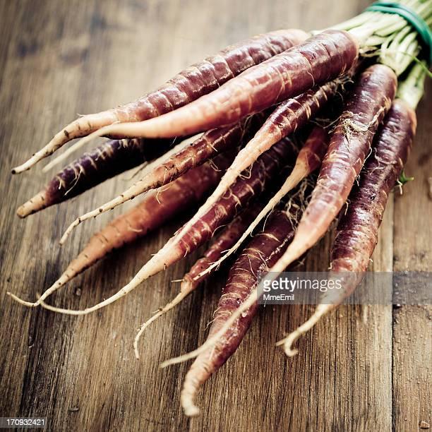 Violet carotte