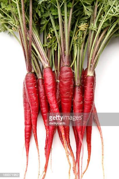 Purple Dragon Karotten auf weißem Hintergrund
