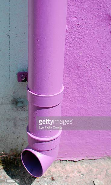 purple drainpipe - lyn holly coorg stock-fotos und bilder