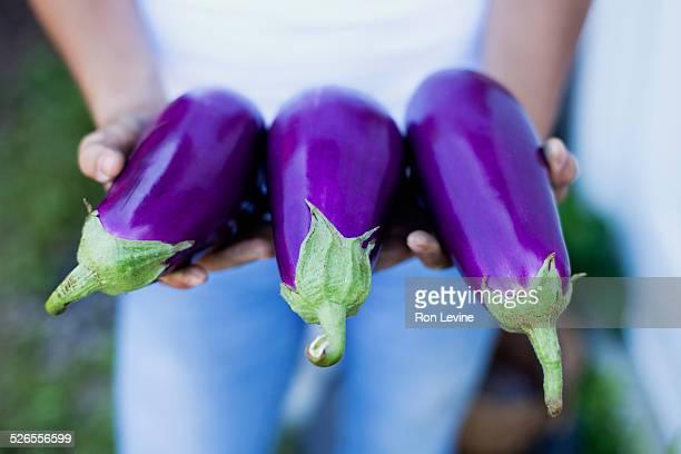 Purple eggplants in girl's hands