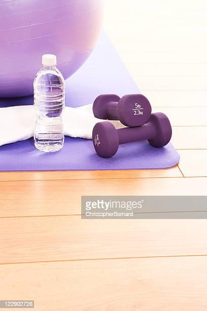 Purple Fitness Ball