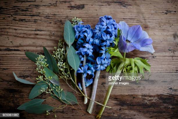 purple flowers on wooden plank - hyacinth stock pictures, royalty-free photos & images