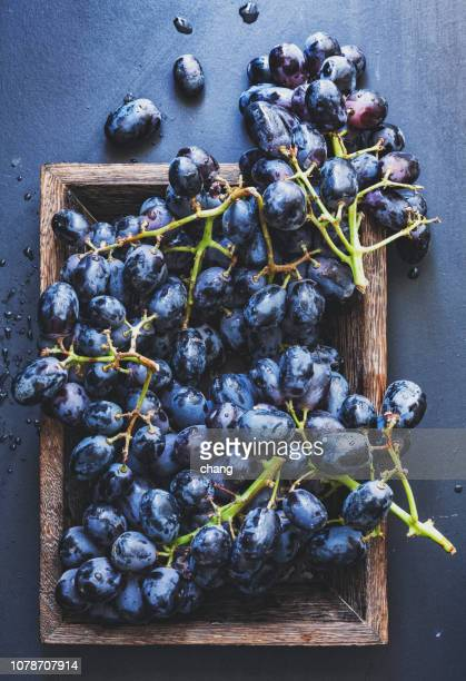 purple grape - grape stock pictures, royalty-free photos & images