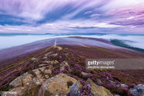 purple landscape on winhill and bamford at dawn, peak district. uk - peak district national park stock pictures, royalty-free photos & images