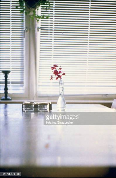purple orchid in a vase on a dining table by a window - kristina strasunske stock pictures, royalty-free photos & images