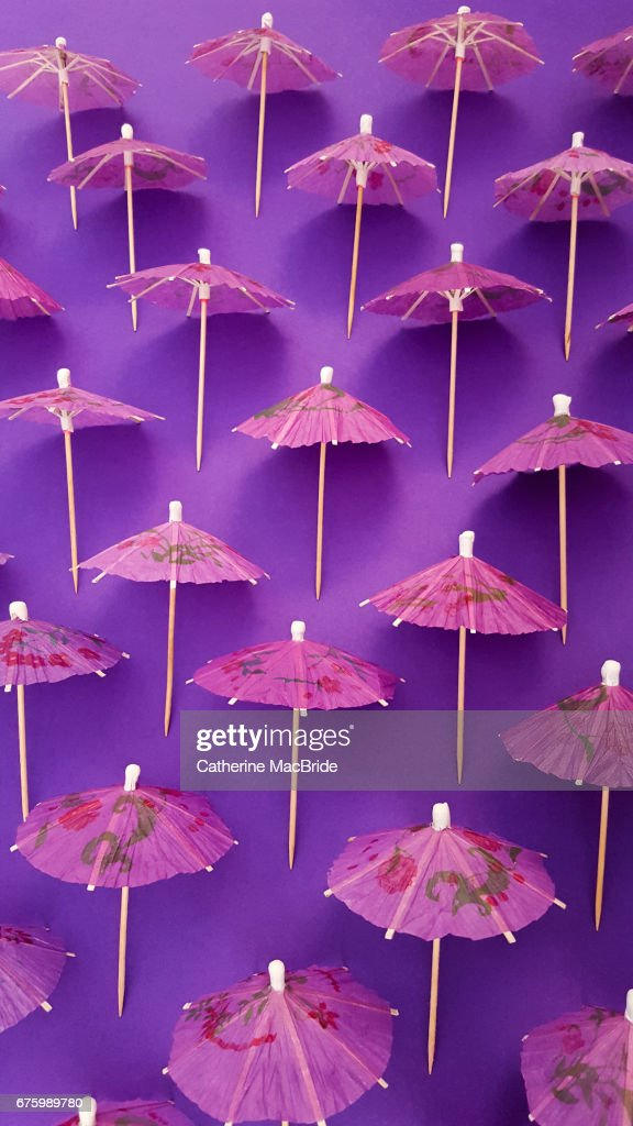 Purple Parasol : Stock Photo