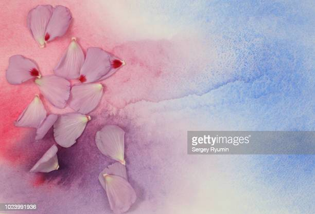 Purple petals on a watercolor background