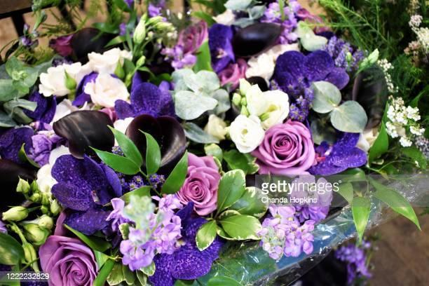 purple - ライラック ストックフォトと画像