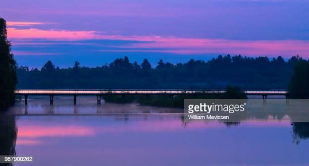 purple twilight - william mevissen stockfoto's en -beelden