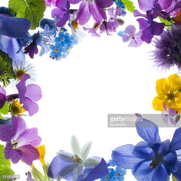Purple, White, Yellow and Pink Spring Flower Border or frame