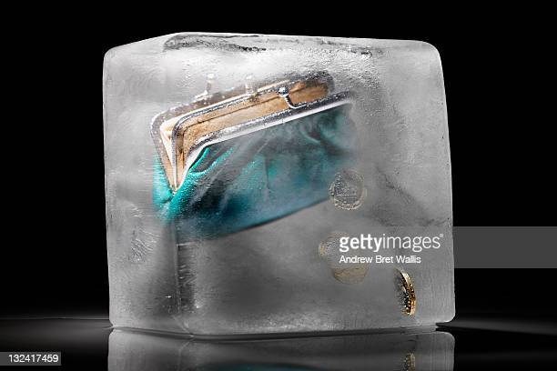 Purse and coins frozen in an ice block